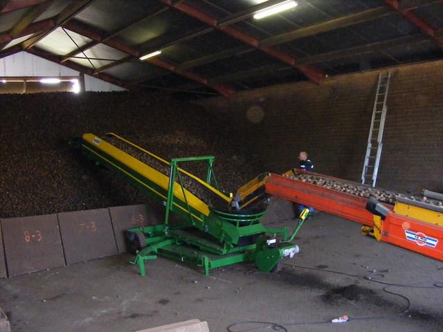 Zetmeelaardappelen inschuren Agrifoto