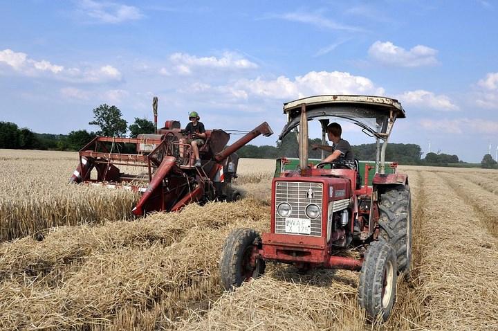 Oldtimer combine duitsland tarwe dorsen Agrifoto